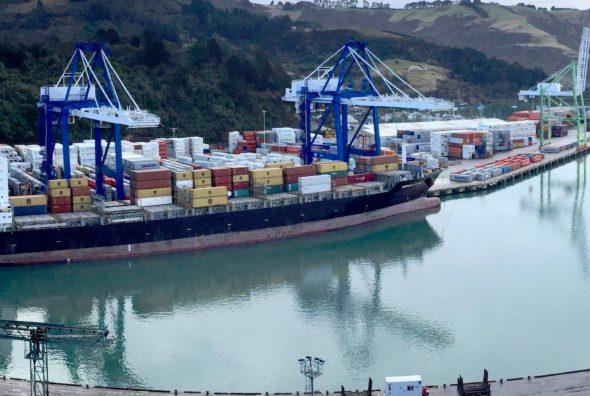 New Otago Harbourmaster